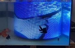 Underwater magnetic LED Flex video modules P3.8 304x304mm (1'x1')