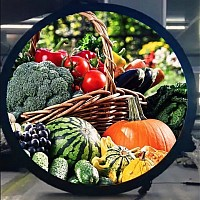 "24"" Round shape LCD video display"